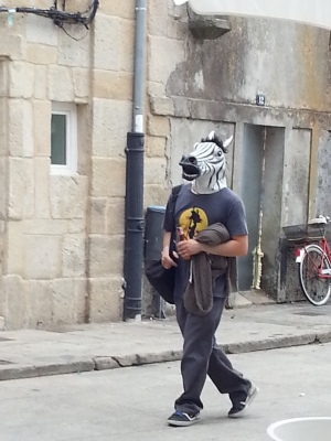Inebriated Zebra
