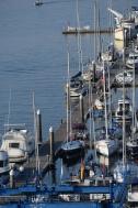 Synergy moored at Baiona