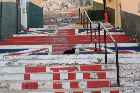 Patriotic Steps